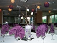 Plum and Ivory Lanterns with Table setting to match