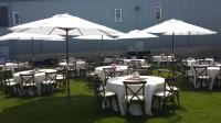 White Market Umbrella's, Ivory Linens, Crossback Chairs