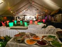 Take your party back outside but underneath a large tent.  This has room for tables, chairs, dance floor stage, tiki bar food and more!